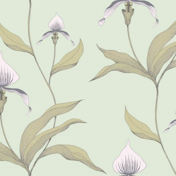 Orchid 66-4028
