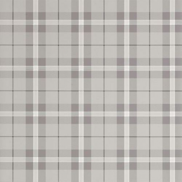 T1027_Grey WINSLOW PLAID