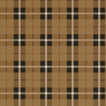 T1028_Camel and Black WINSLOW PLAID