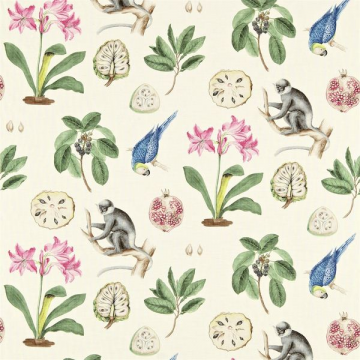 CAPUCHINS DVOY223273-chintz