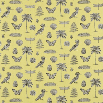 DVOY223292-COCOS yellow charcoal