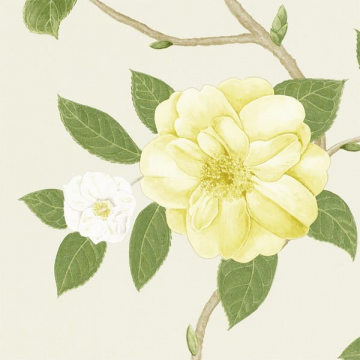 CHRISTABEL DVOY213377-yellow ivory