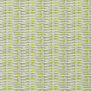 PCL664-05 BARBADE - LIME