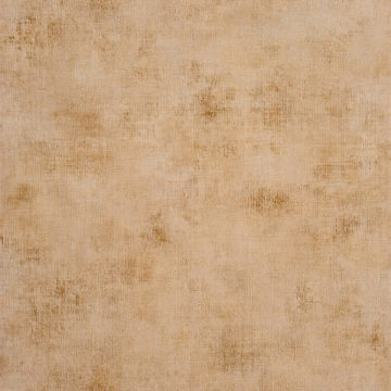PSP 6362 11 16 Taupe Clair