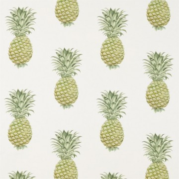 DART226301 PINEAPPLE ROYALE