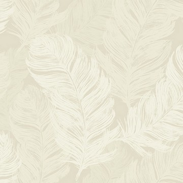 OY31805 FEATHERS