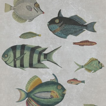 POISSONS Grey WP20182