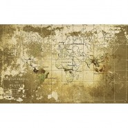 6800306 OLD MAP GOLD