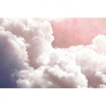 6800703 CLOUDS PINK