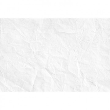 R11221 Pleated Paper