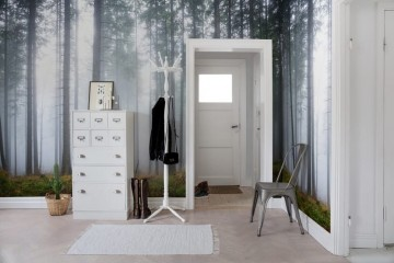 R15201 Forest Glade