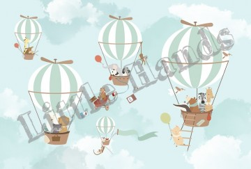 Balloon Ride V