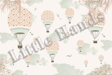 Balloon Ride VIII