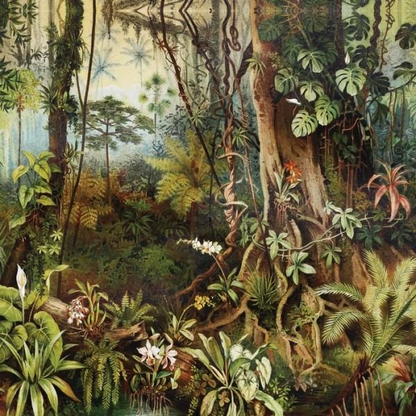 AMAZZONIA INKBIUU16