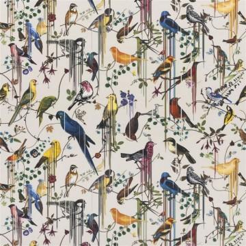 FCL7024/03 BIRDS SINFONIA-JONC