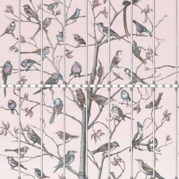 Uccelli 114-11022.jpg