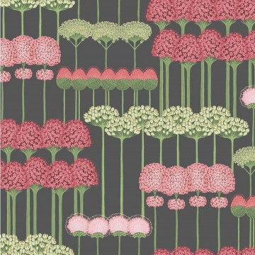 Allium 115-12037