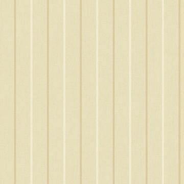 CS90505 STRIPE 2