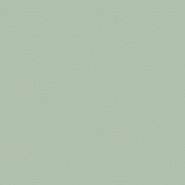 710-28 BOK Light Green