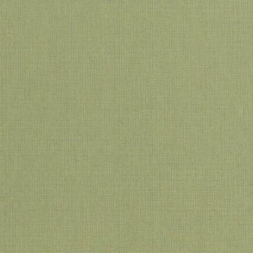 Canvas - 10161