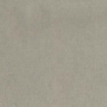 Canvas - 10163