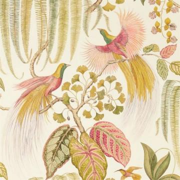 BIRD OF PARADISE DGLW216653