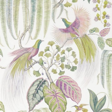 BIRD OF PARADISE DGLW216654