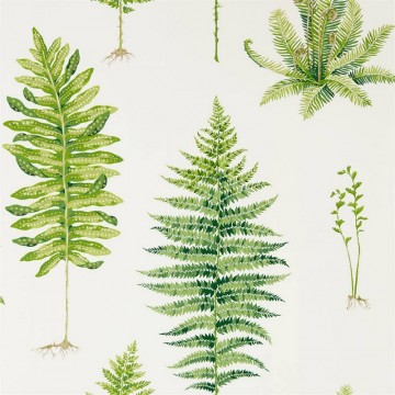 FERNERY DGLW216633 Botanical Green