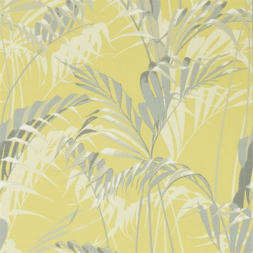 PALM HOUSE DGLW216642 Chartreuse/Grey
