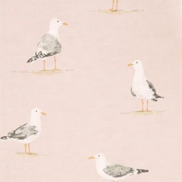 SHORE BIRDS DCOA216562