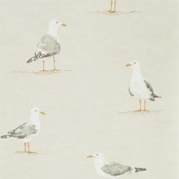 SHORE BIRDS DCOA216563