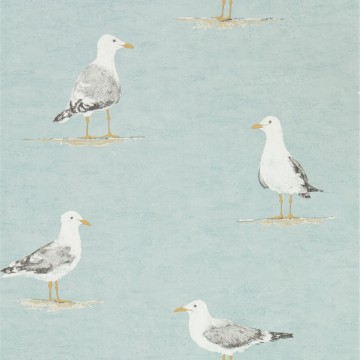 SHORE BIRDS DCOA216564