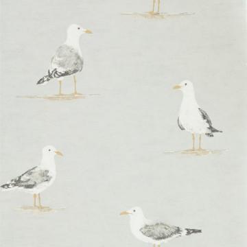 SHORE BIRDS DCOA216565