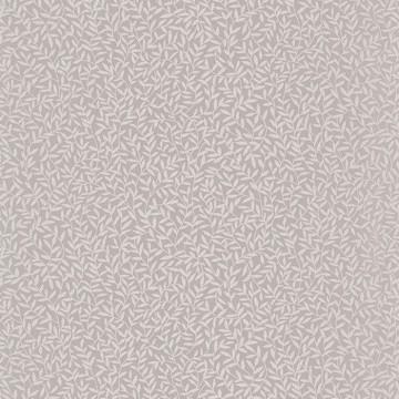 OXFD84121216