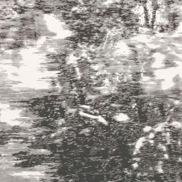 Mitoku Avocet W919-01