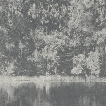 Mizumi Panel Carbon W924-01FP