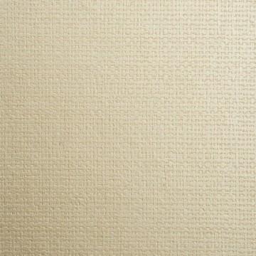 Canvasa 2618.84