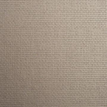 Canvasa 2618.89