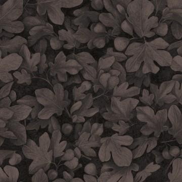 Ficus Caviar KEN105
