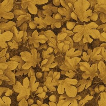 Ficus Gold KEN103