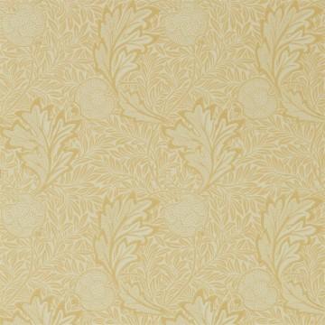 Apple 216691 Honey Gold