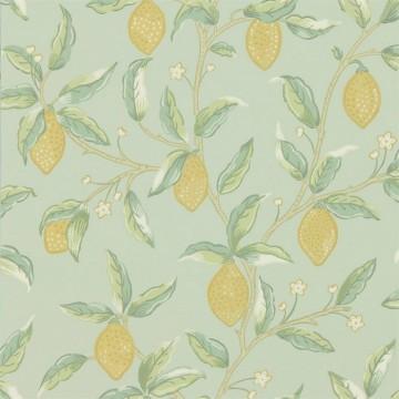 Lemon Tree 216673 Sage