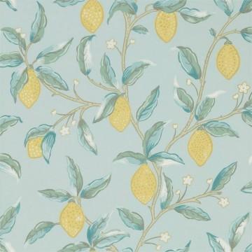 Lemon Tree 216674 Wedgewood