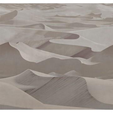 Dune 19011-02