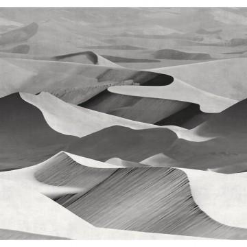 Dune 19011-03