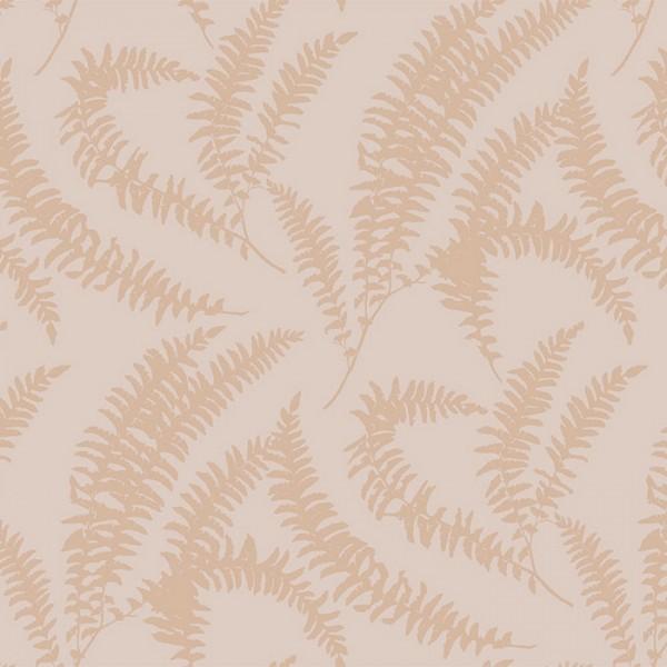 Felci 1905-125-03 Pink Stucco