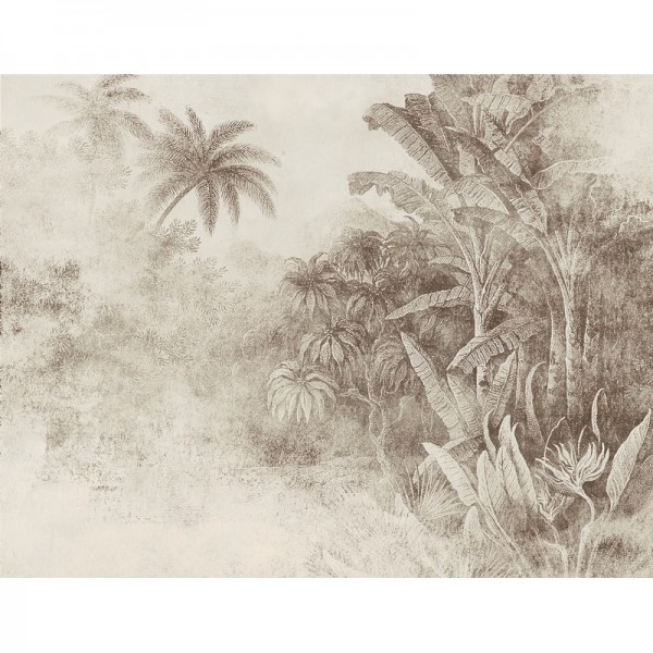 Congo M3022-2
