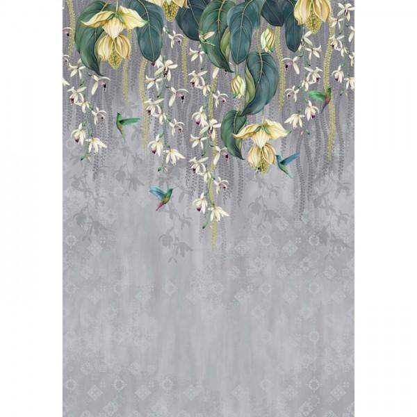 Trailing Orchid w7334-02
