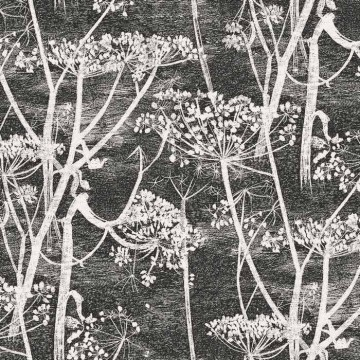 Cow Parsley 66-7046
