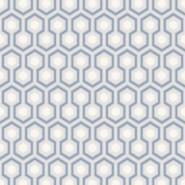 Hicks' Hexagon 66-8054
